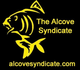 The Alcove Syndicate